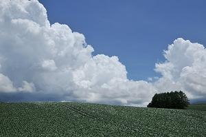 20100630-1.jpg